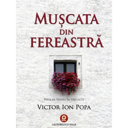 cop_muscata_fereastra